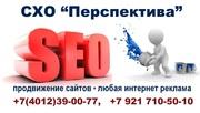 Создание сайтов. Продвижение сайтов. Любая интернет реклама.