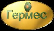 ООО «Гермес» оказывает качественные бухгалтерские и компьютерные услуг