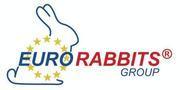 Готовый бизнес,  экологические мини-фермы для выращивания кроликов